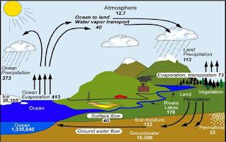 Inilah 4 Siklus Hidrosfer dan Pembagian Jenisnya