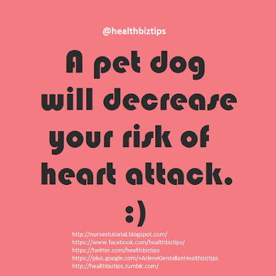 A pet dog will decrease your risk of heart attack.