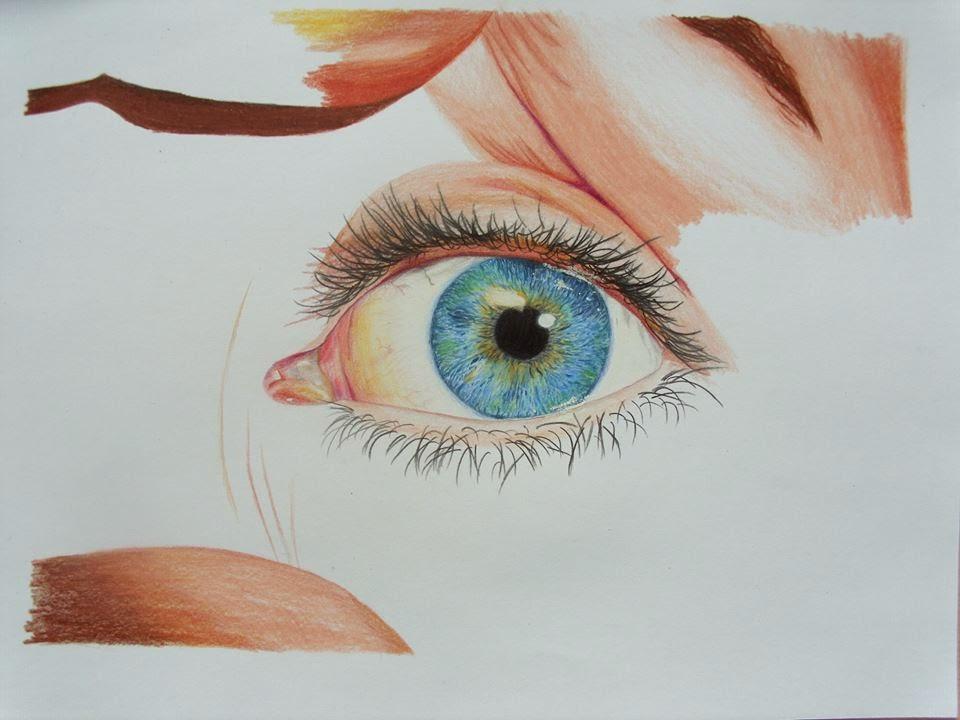 deaf monkey art realistic drawings colorful drawings eye