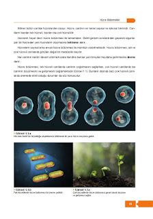 10. Sınıf Biyoloji Ders Kitabı Cevapları Berkay Yayınları Sayfa 15