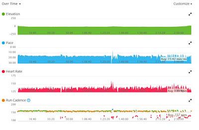 Better Garmin running data from a Star Wars Half Marathon training session