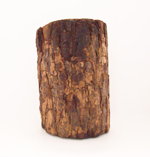 Old man in log Back View Of His Bark