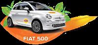 Concurs Lipton Fiat