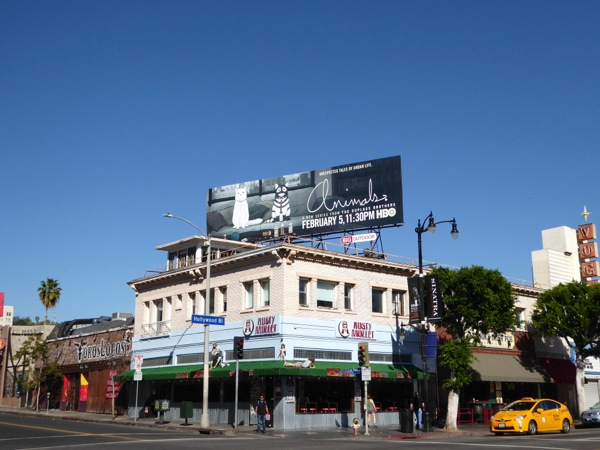 Animals season 1 cats billboard