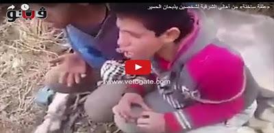 «علقة سُخنة» من أهالي الشرقية لشخصين يذبحان الحمير