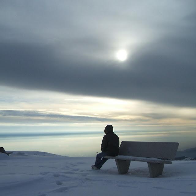 Alene i sneen på en kold vinterdag