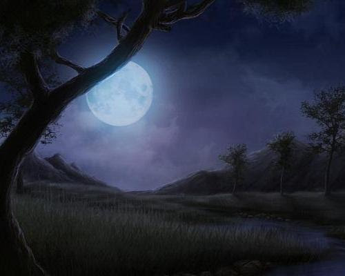 Full moon in the night at the meadows