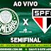 Jogo Palmeiras x São Paulo Ao Vivo 07/04/2019