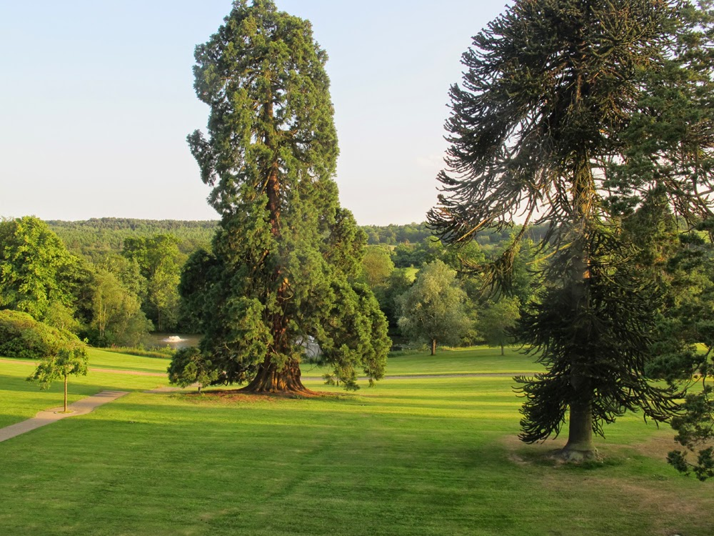 Ashdown Park Hotel, Sussex