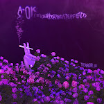 Terror Jr - A-OK (Everythings Perfect) - Single Cover