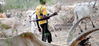 尼日利亚军队占领民兵牧民