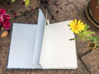 lesen-meine-buchigen-vorsaetze-2017-lesetagebuch