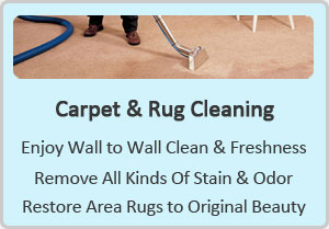 http://www.carpetcleaningdickinson-tx.com/carpet-cleaning/carpet-and-rug-cleaning.jpg