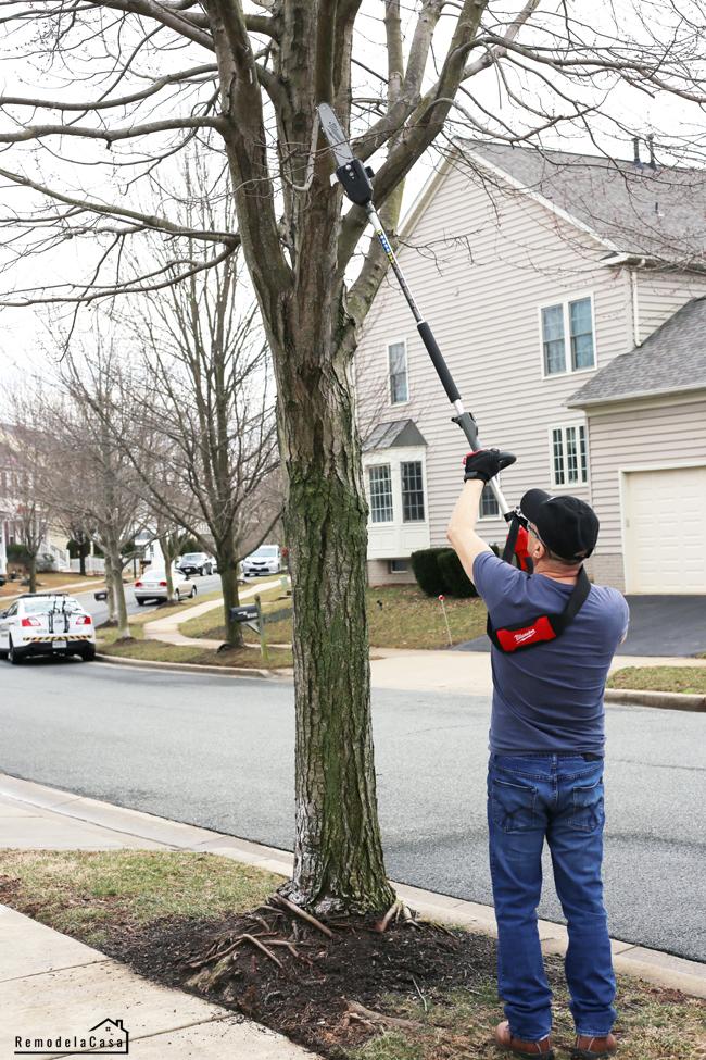 Pole saw attachment for Quik-Lok System - German Garay cutting tree branch