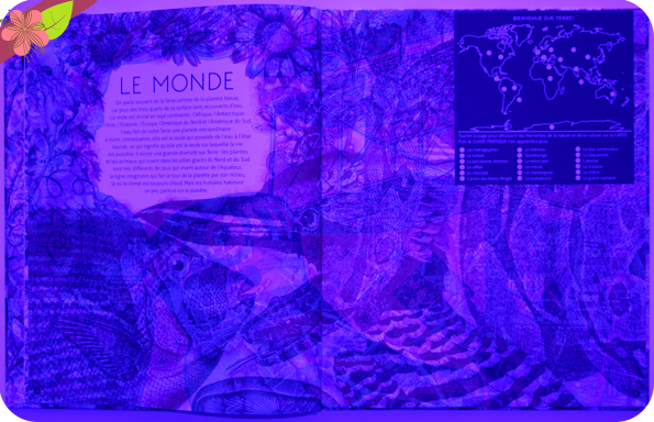 Illuminatlas de Kate Davies et Carnovsky - éditions Milan