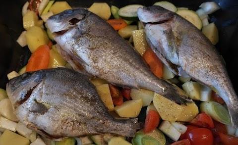 Fazekas: halgazdálkodásra évente mintegy 514 millió forint fordítható