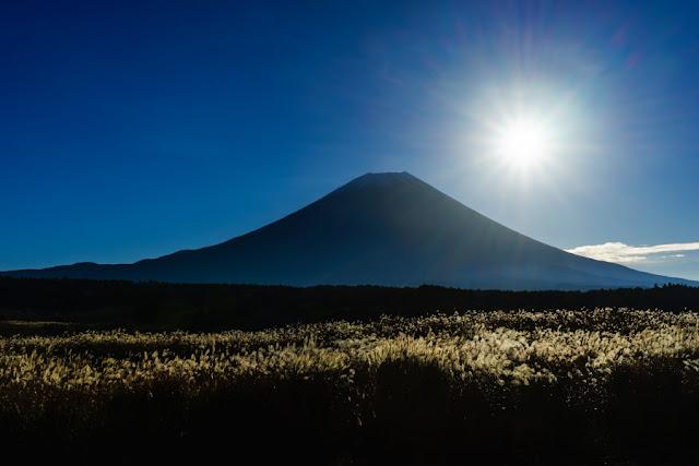 ススキの原と富士山~朝霧高原(静岡)
