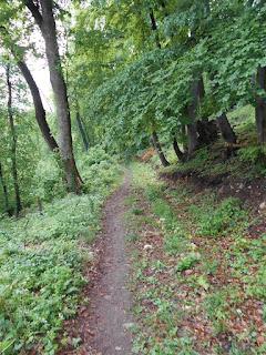 Hangulatos ösvény az Öreg-kovács lábánál