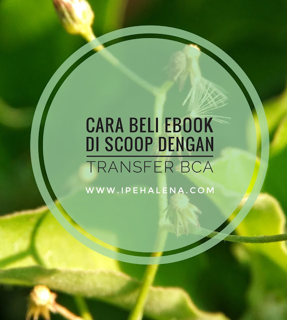 Cara Beli Ebook di Scoop