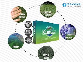 Pengertian Obat Herbal CellMaxx