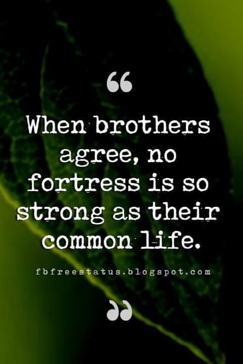 Good Brother Quotes, When brothers agree, no fortress is so strong as their common life.