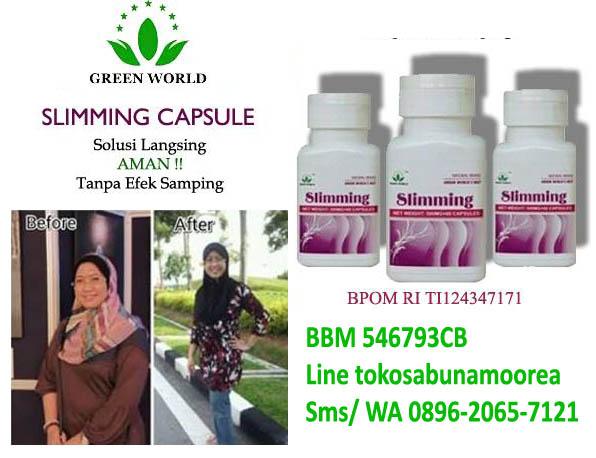 Jual Online Obat Pelangsing Herbal Aman Ber BPOM