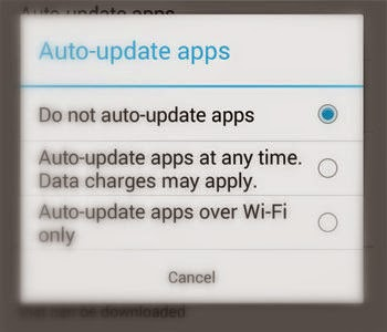 Select Do not auto update apps