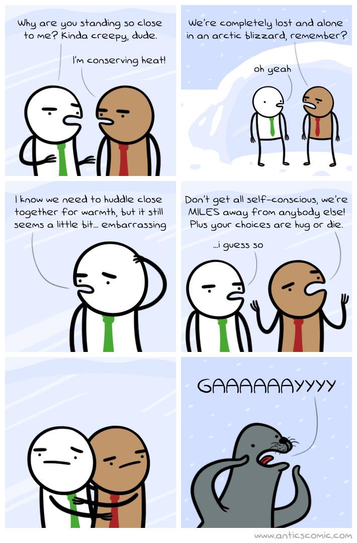 Homosexual seal tumblr