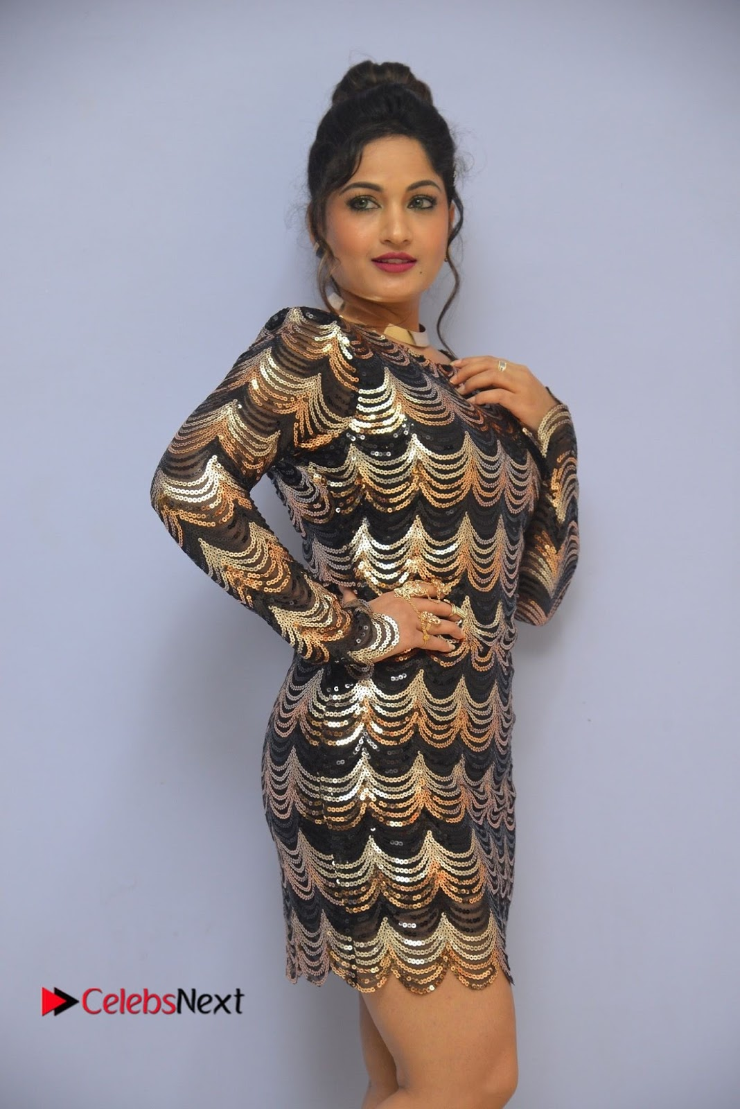 Actress Madhavi Latha  Pictures in Short Dress at On Mona Birthday Premiere  0022.JPG
