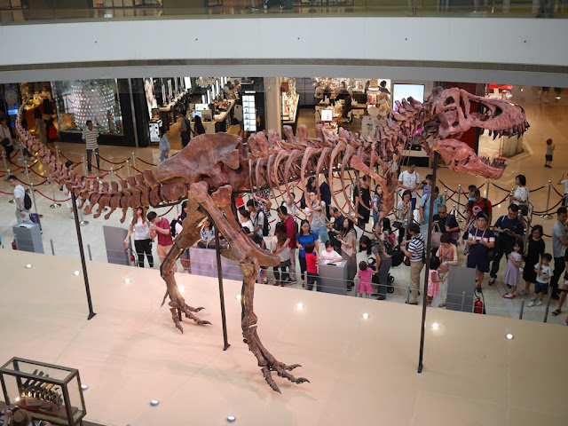 compllete Tyrannosaurus rex skeleton on display at the IFC in Hong Kong