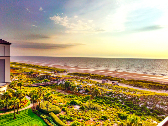 Best Places To Eat Near Amelia Island