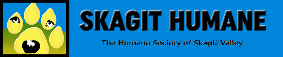 Skagit Valley Humane Society Cats