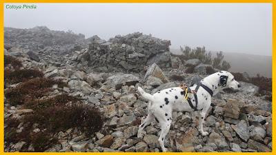 Dardo en la cima del Pico Mulleiroso envuelto entre la niebla