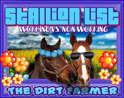 Farmville Stallions and Stable Breeding