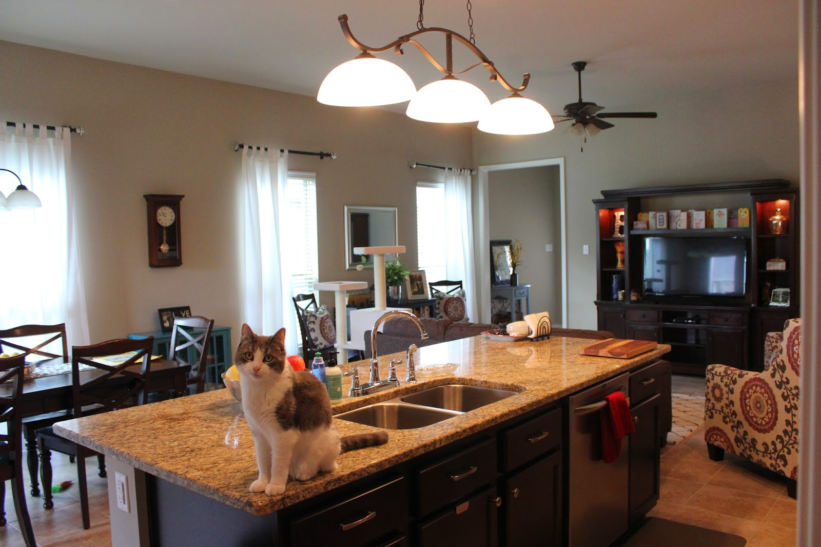 Louisiana Bound Adventures In Home Decor