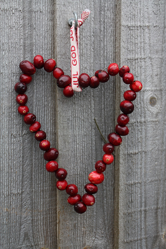 Cranberry Love on a Wire | Stunning Homemade Christmas Ornaments You Can DIY On A Budget