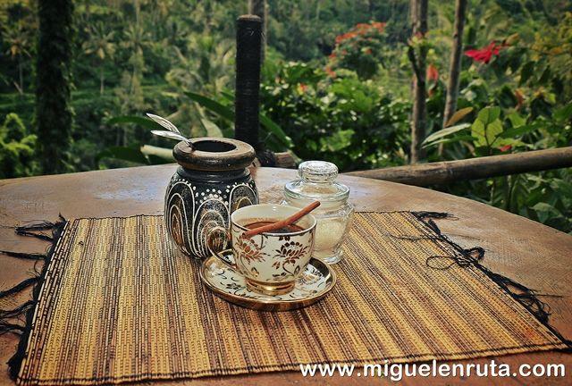 Kopi-Luwak-Bali-Indonesia