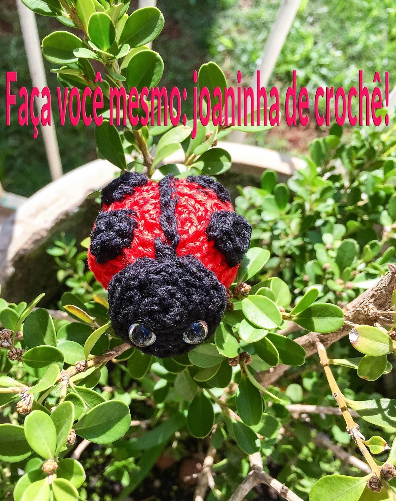 Joaninha passo a passo | Croche.com.br | 1600x1267