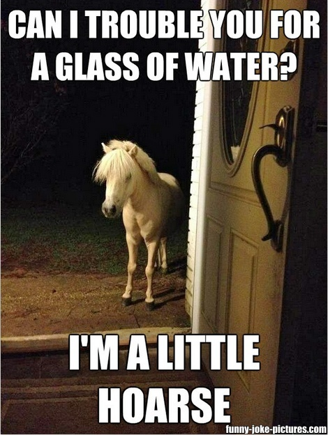 Can I trouble you for a glass of water?  I'm a little hoarse.