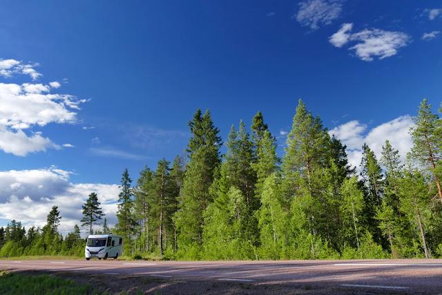 Camper, Campervan, Strasse, Schweden, Wald