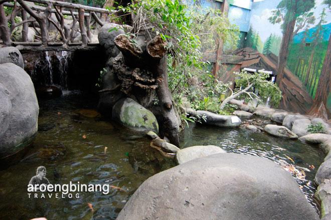 taman akuarium air tawar tmii jakarta timur