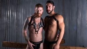 Seth Santoro & Bennett Anthony – Ginger Bred