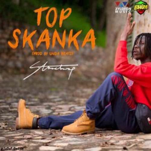 Instrumental: Stonebwoy – Top Skanka (Prod by Freddrix)