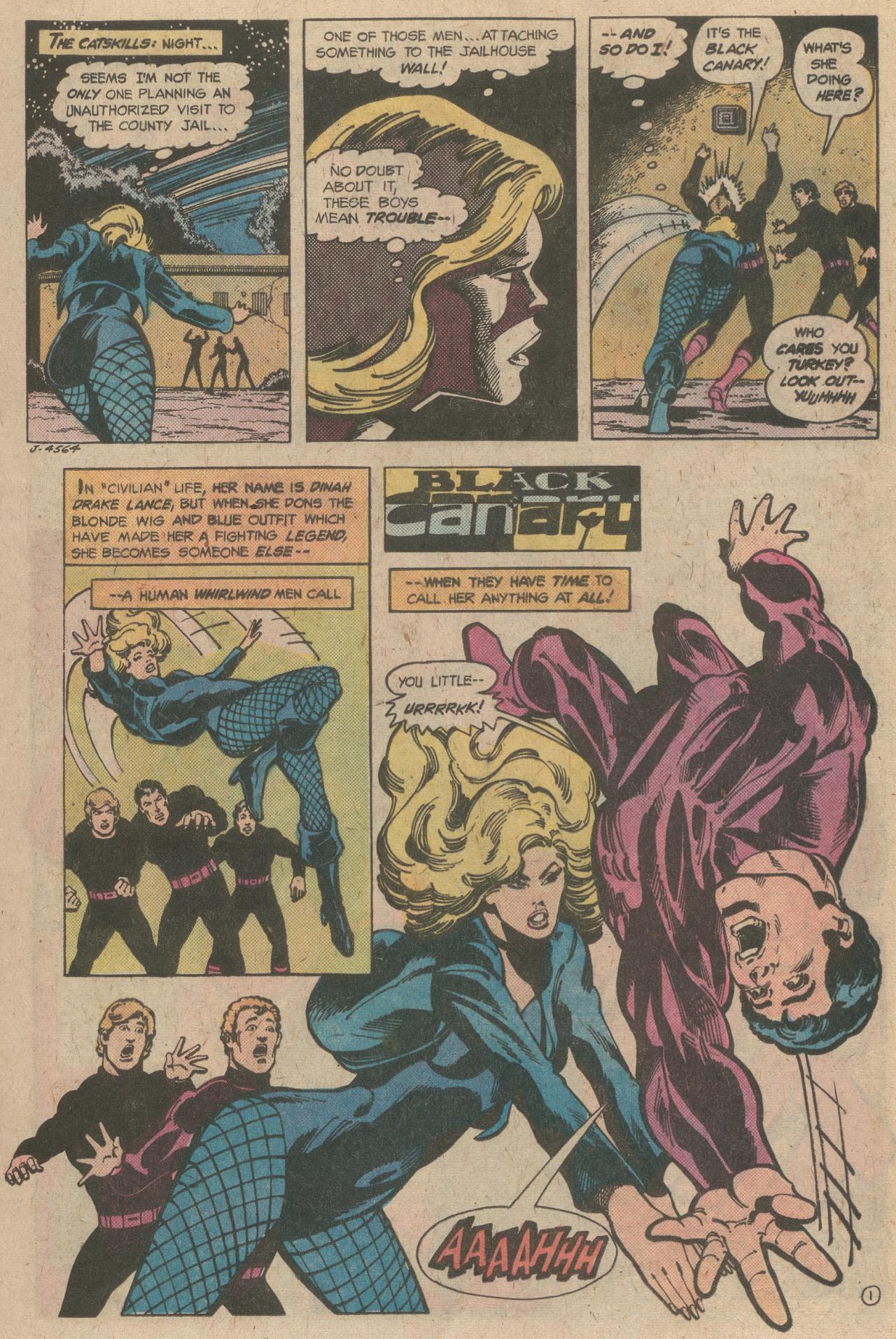 Read online World's Finest Comics comic -  Issue #245 - 34