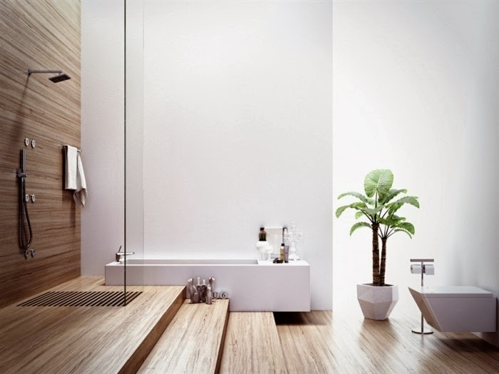 stunning modele grande salle de bains avec spa ideas. Black Bedroom Furniture Sets. Home Design Ideas
