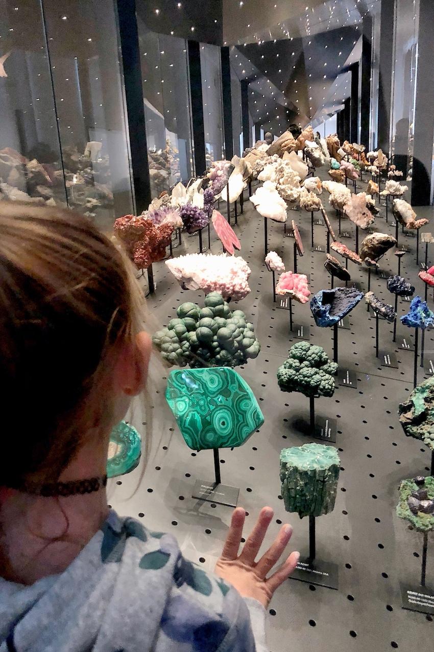 Hessisches Landesmuseum Geologie