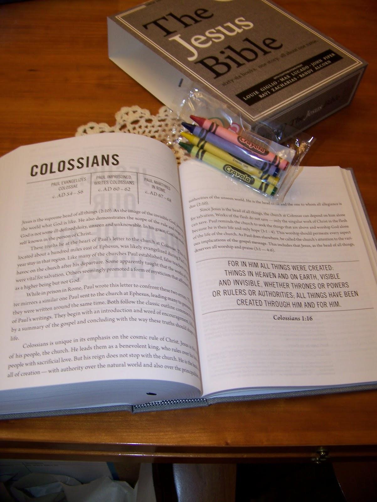 homeschool and etc the jesus bible niv version