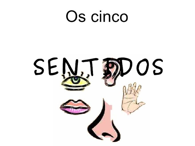 OS CINCO SENTIDOS - SISTEMA SENSORIAL.