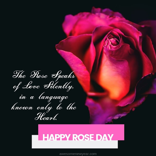 Happy Rose Day 2019 | Wishes, Gifs, Best Quotes, Images, Photos