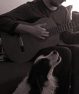cane che canta mentre il padrone suona la chitarra